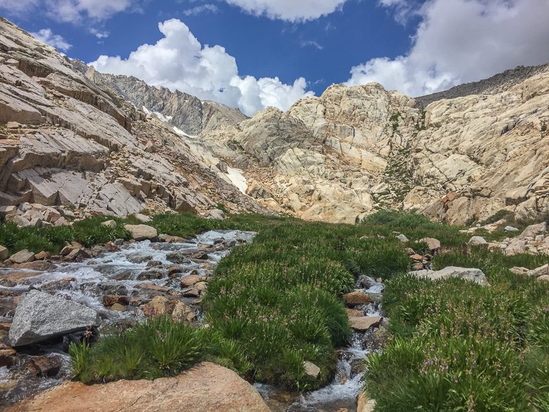 Trailside Meadow, roughly the halfway point on the Mount Whitney Trail.