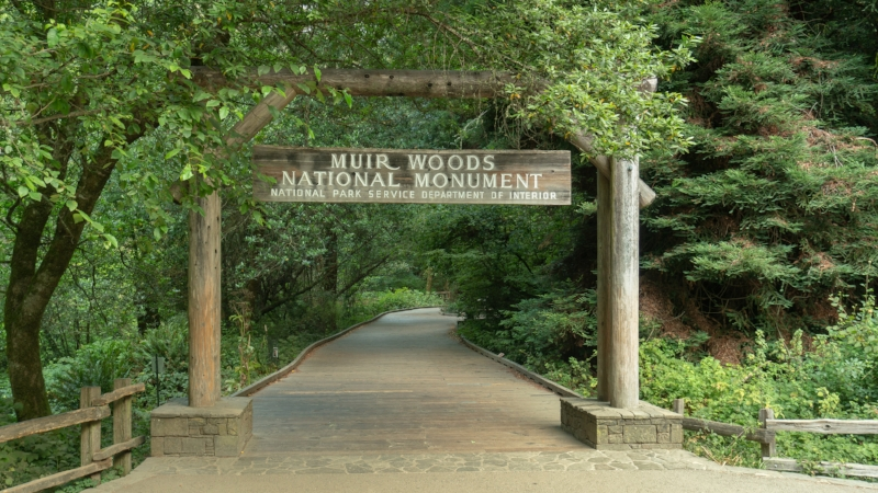 Muir Woods entrance