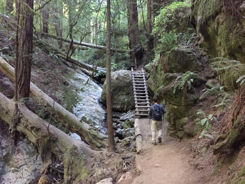 Onur approaching a ladder halfway through the Steep Ravine Trail.