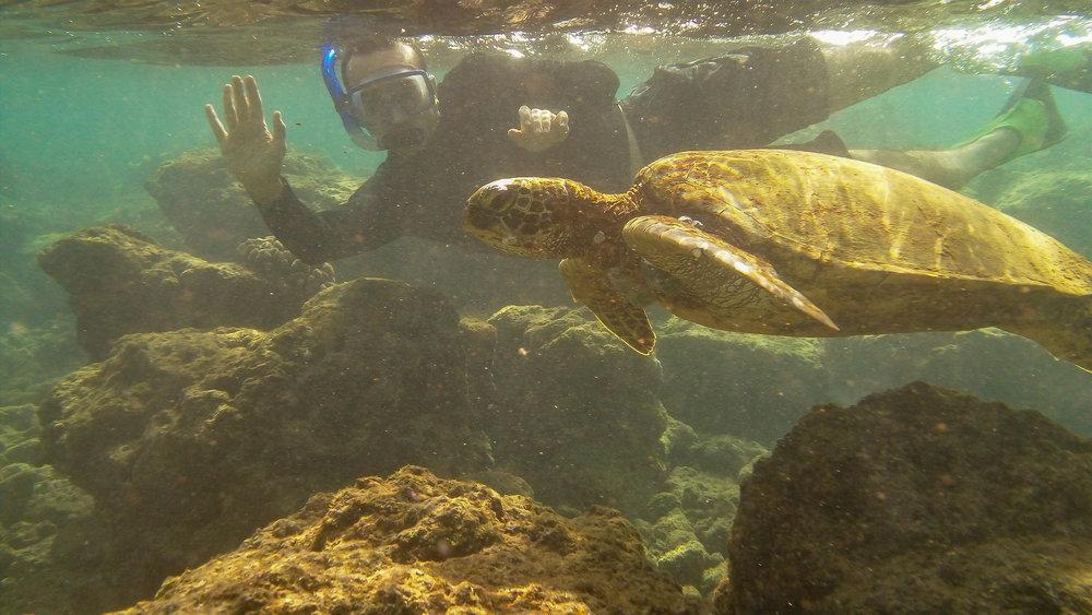 Kauai Snorkeling-13.jpg