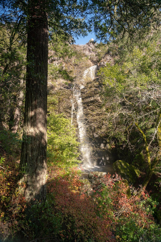 Carson Falls-68.jpg