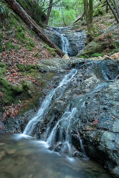 Uvas Canyon Waterfall Loop-203.jpg