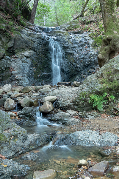 Uvas Canyon Waterfall Loop-204.jpg
