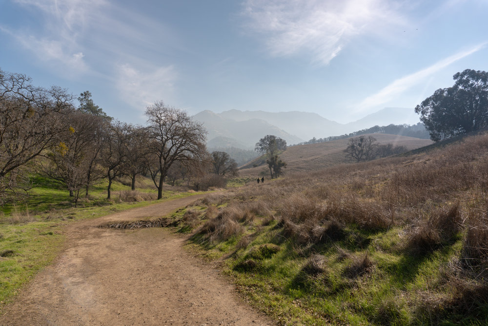 Mount Diablo Waterfall Loop-25.jpg