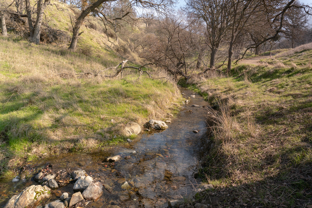 Mount Diablo Waterfall Loop-37.jpg