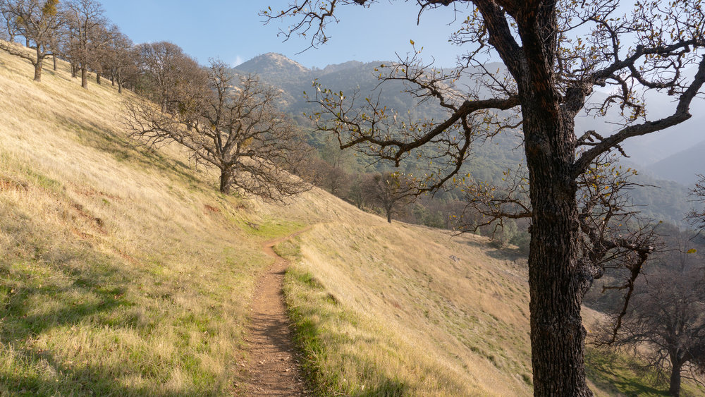 Mount Diablo Waterfall Loop-151.jpg