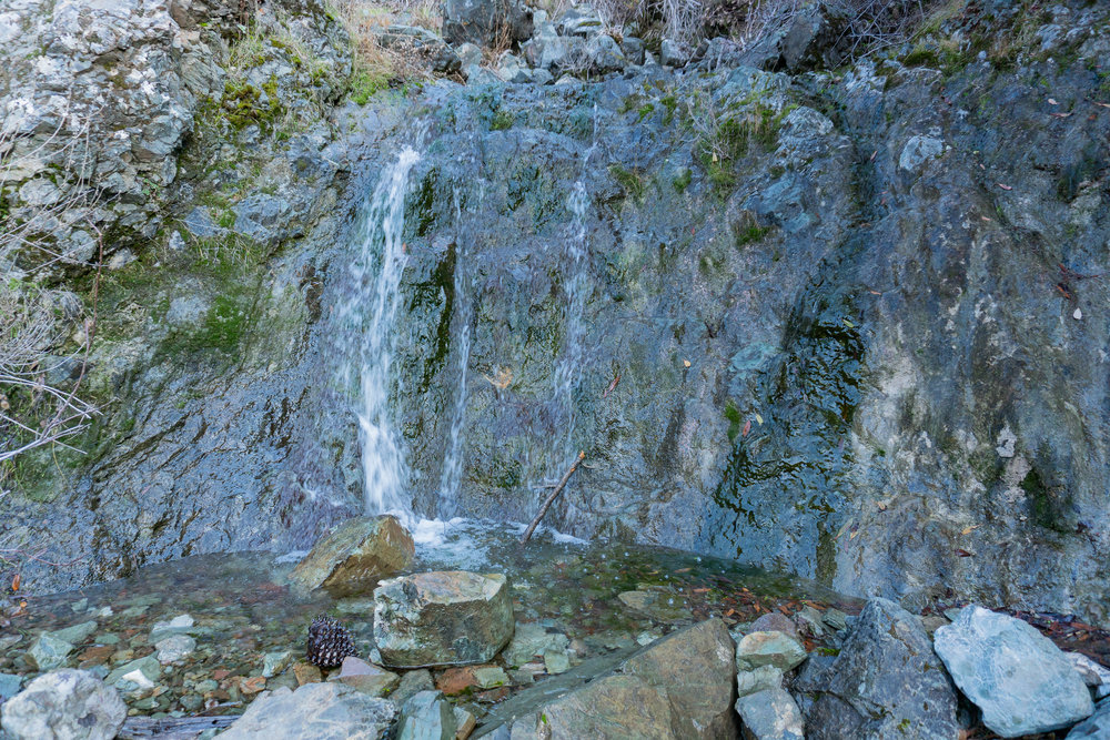 Mount Diablo Waterfall Loop-281.jpg