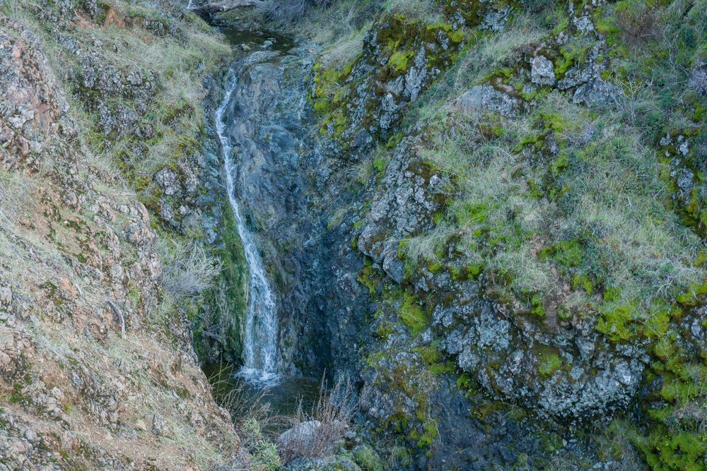 Mount Diablo Waterfall Loop-295.jpg