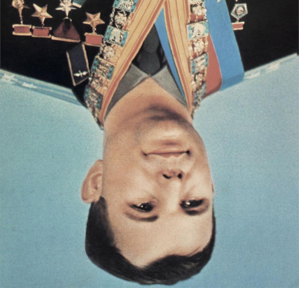 Gordon Shrigley, Cosmonaut, 2015, Glclée print, 137 × 135 cm