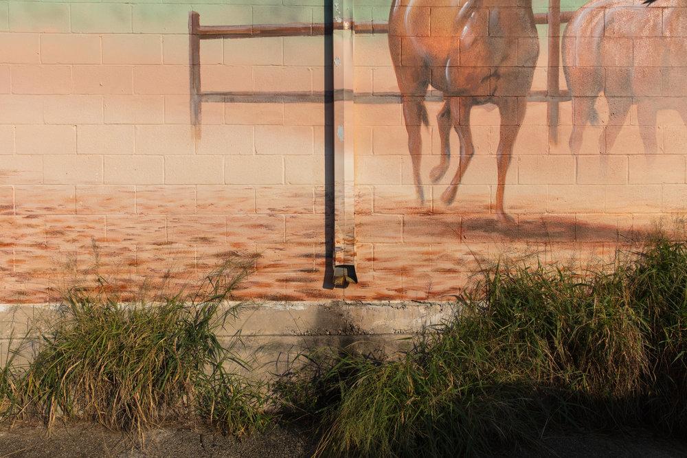 Thompson Lane  Austin, Texas (2015)