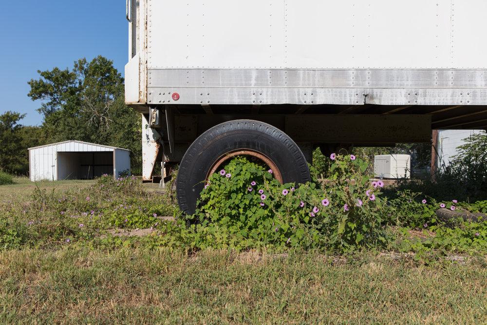 Farm-to-Market 1604  Irene, Texas (2107)