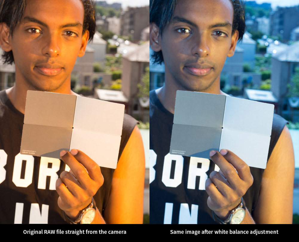 White balance reference card and adjustment