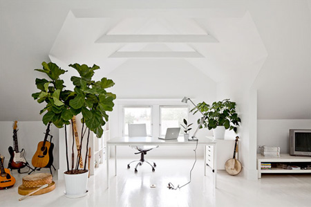 5_flowers-plants