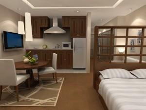 723 - one room living - modern