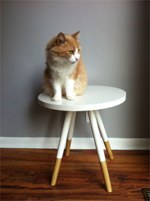 side table with cat