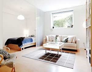 Small-Apartment-Bedroom-Living-Room-Combination