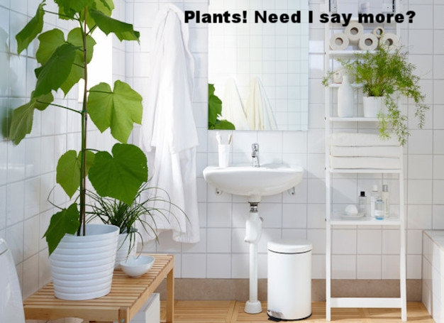 shower-plants.jpg