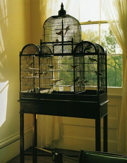 Got birds to house? Make their house part of your decor like this pretty rendition that sits in front of the window for breeze and sun.