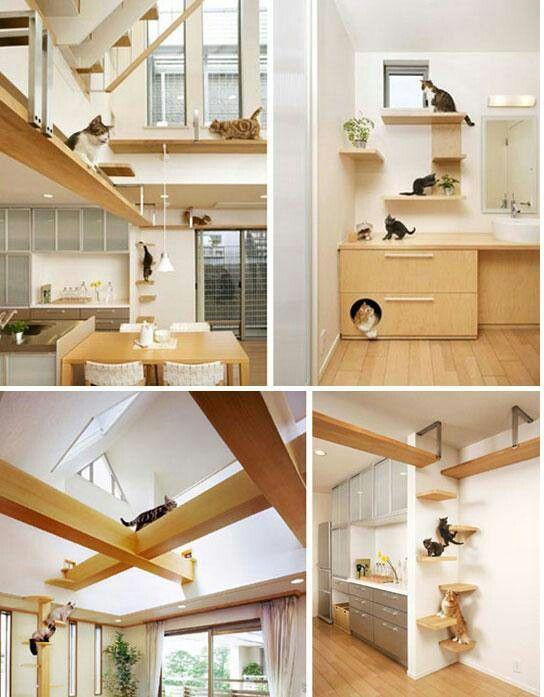 Who says cat decor can't blend nicely into home decor? Here's a great example… for some really lucky cats!