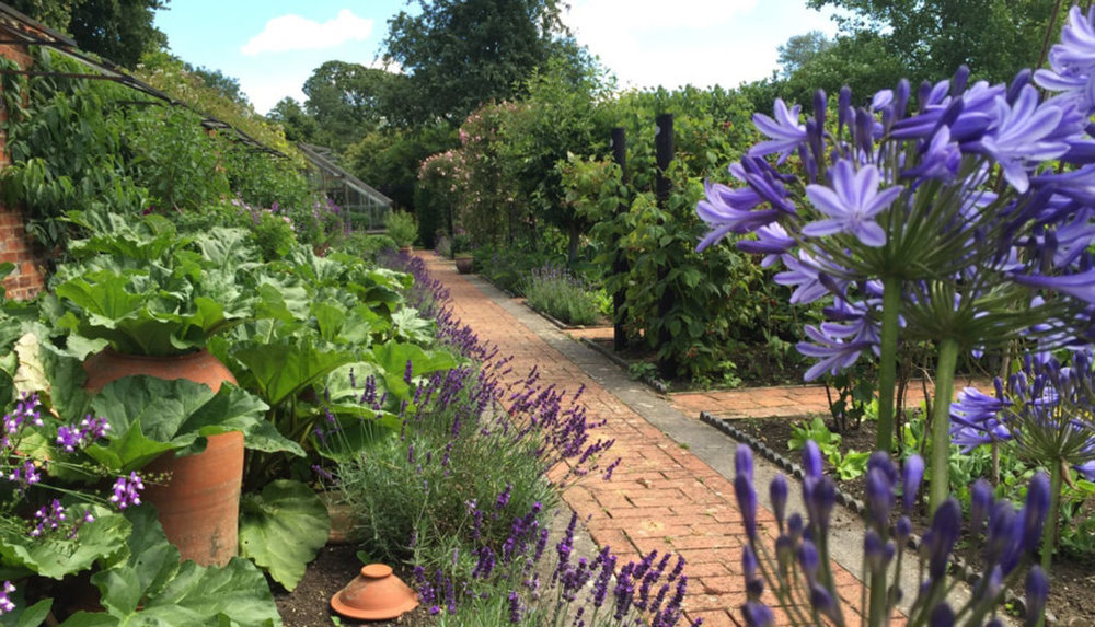 005-Garden-Picture-1030x590.jpg