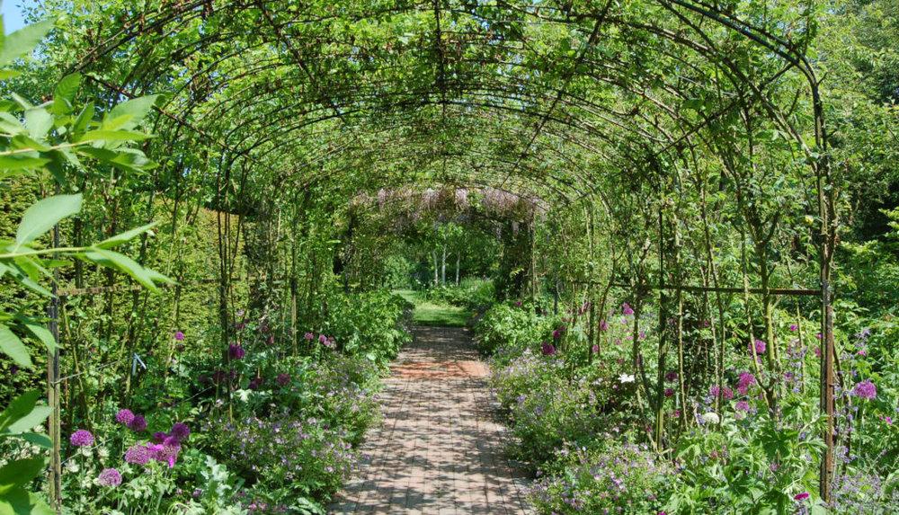 Garden4-1030x590.jpg