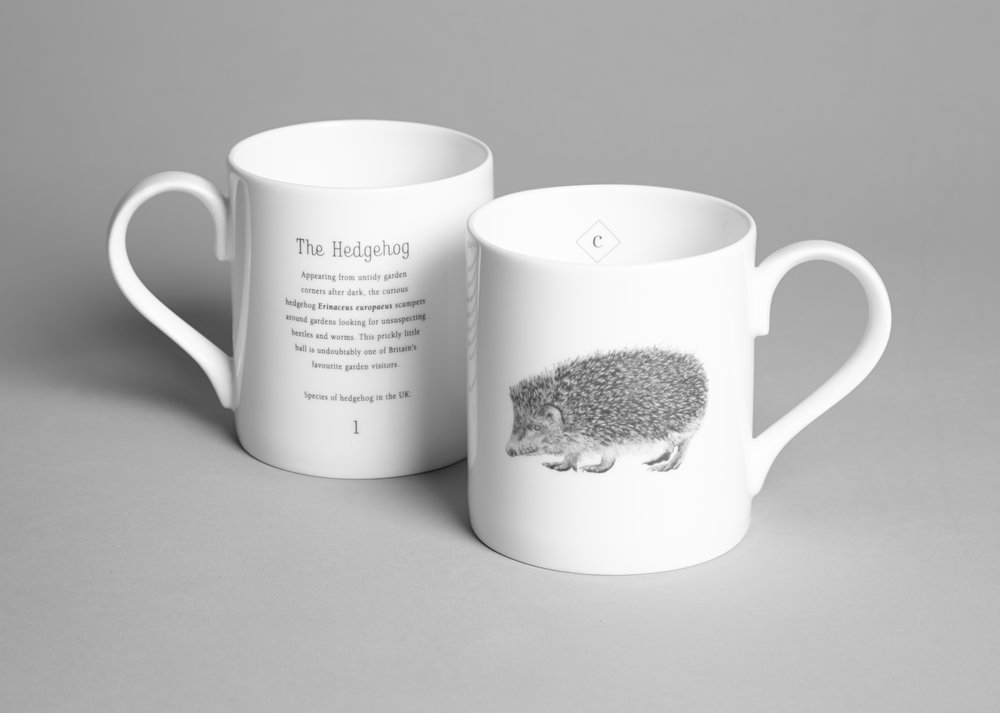 Mug Hedgehog.jpg