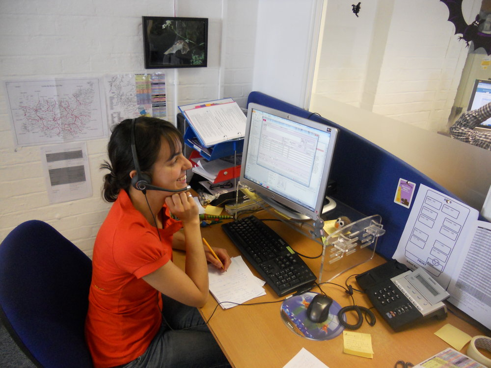 National Bat Helpline Volunteer - Photo taken from Bat Conservation Trust Website.