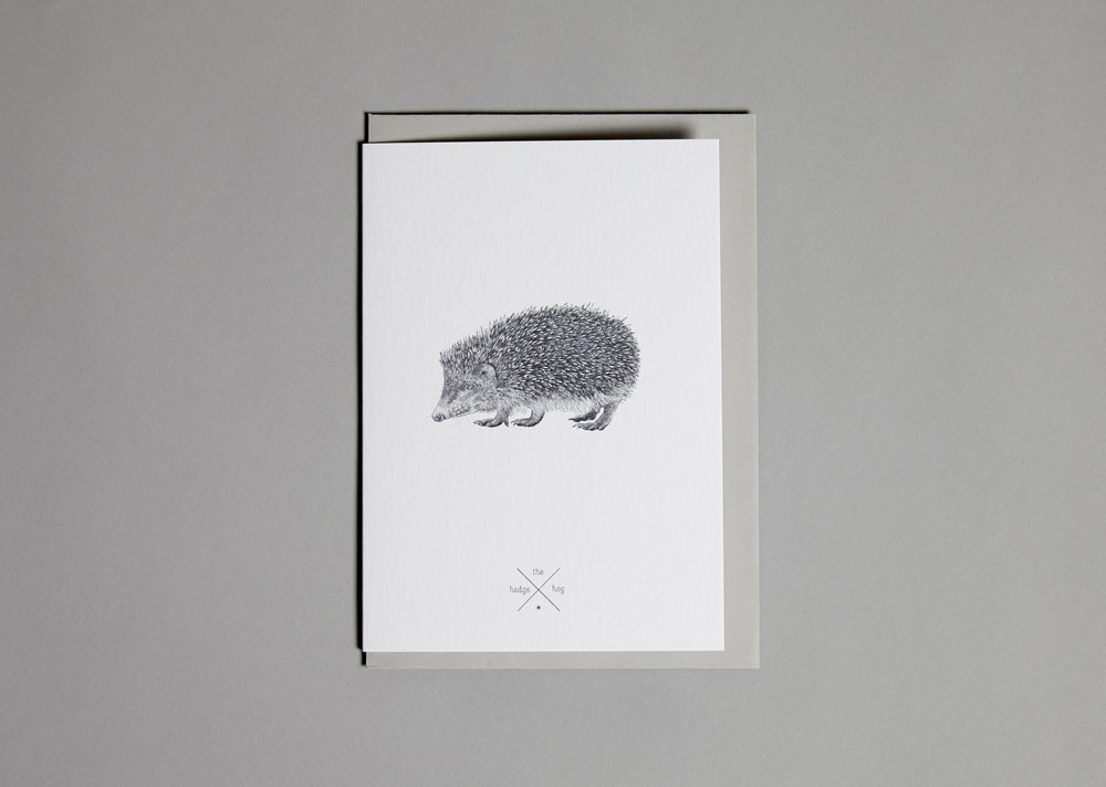 Cards Hedgehog.jpg