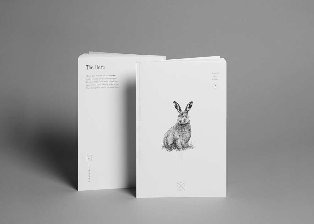 notebook-hare.jpg