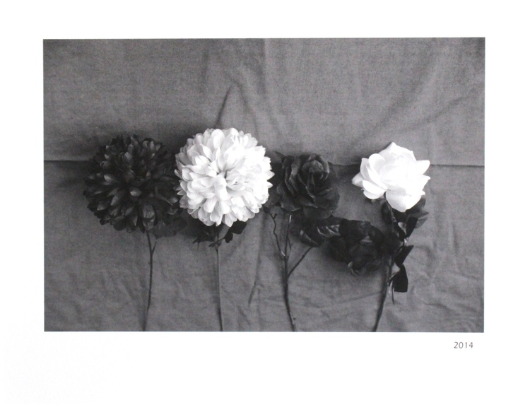 "'LF - 2 (Flowers)' - 8.5"" x 11"" - photograph - $325"
