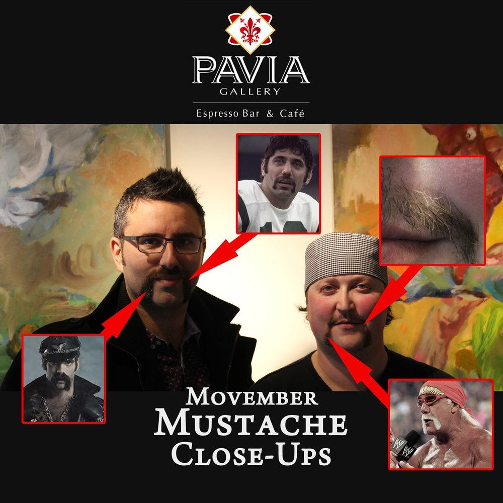 One of the first fundraising initiatives taken on by PAVIA was Movemeber! The facial hair was bad but the community donated to this great cause!