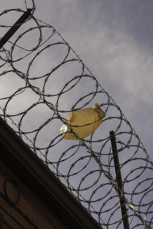 plastic on fence.jpg