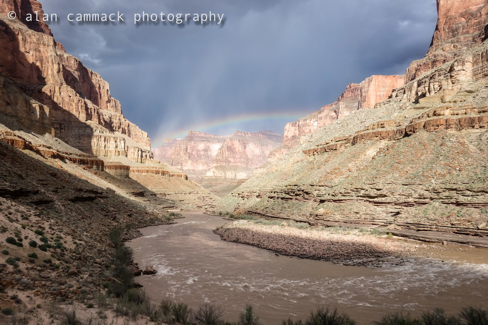 Fossil Rainbow