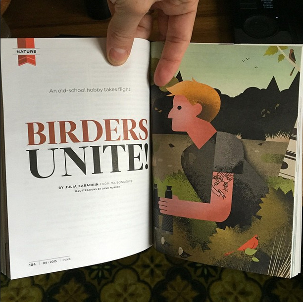 Dave Murray illustration Birders Unite for Readers Digest