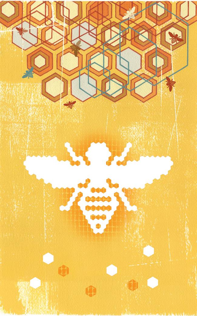 Digital Hive - TS316