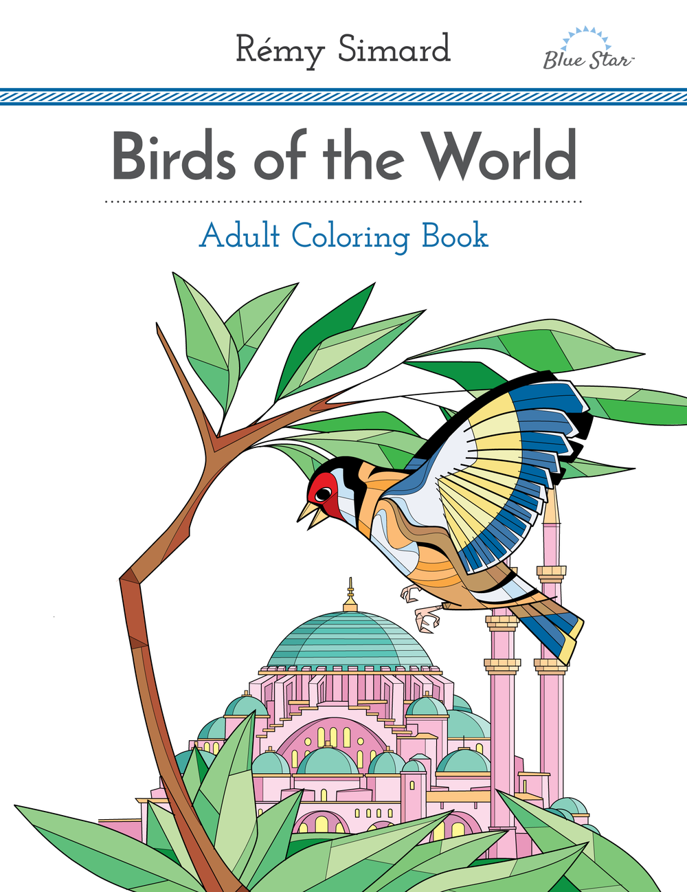 Birds Of The World Adult Coloring Book By Remy Simard