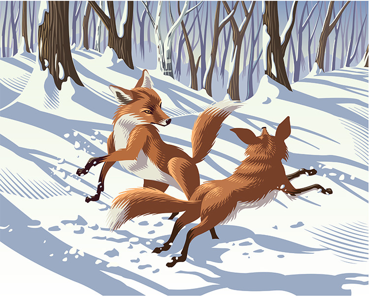 Frolicking Foxes - GA521