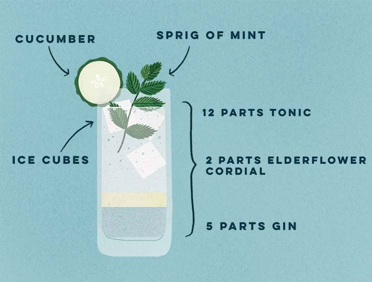 A Twist on Gin & Tonic - CO315