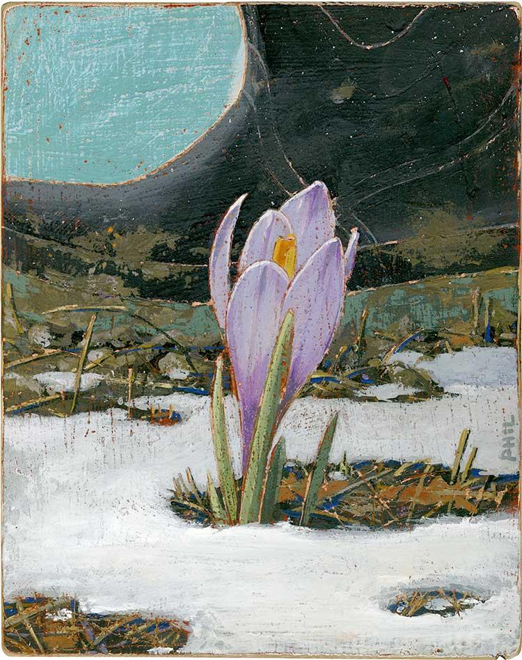 Spring Crocus - PG421