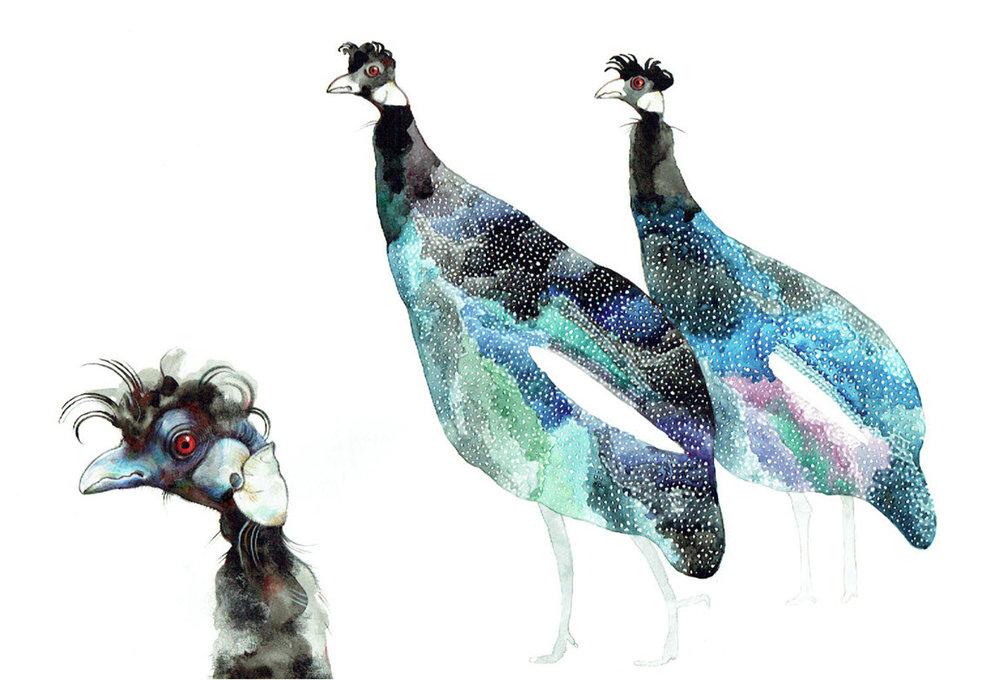 Guinea Fowl - TB122