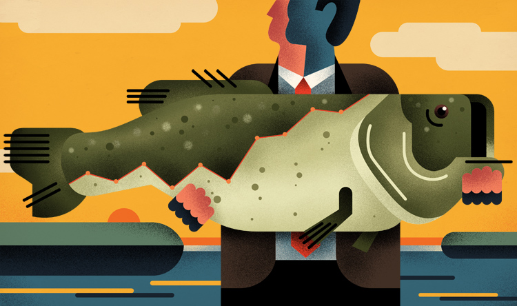 Stock picks from the pros. How to land the next big fish.