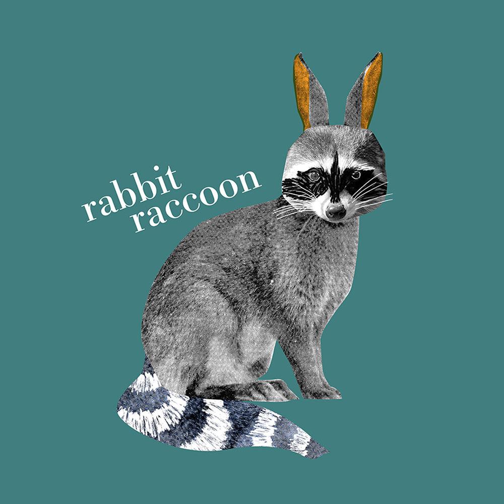 Rabbit Raccoon - NN296