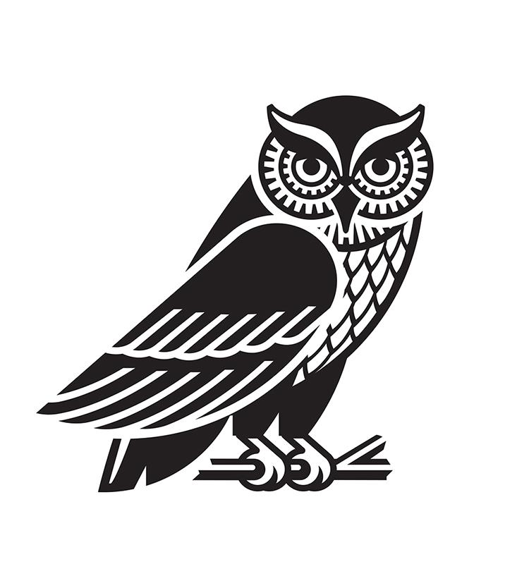 Eastern Screech Owl - GA733