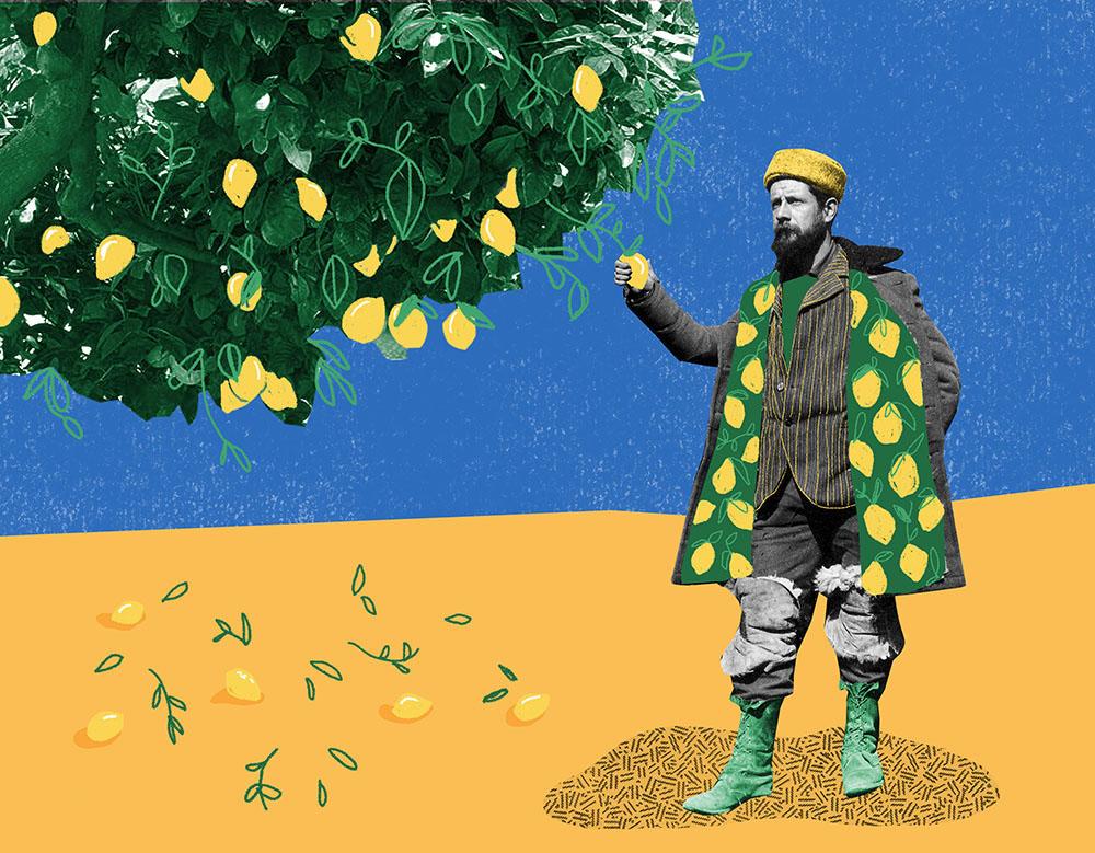 Meyer Lemons - NN346