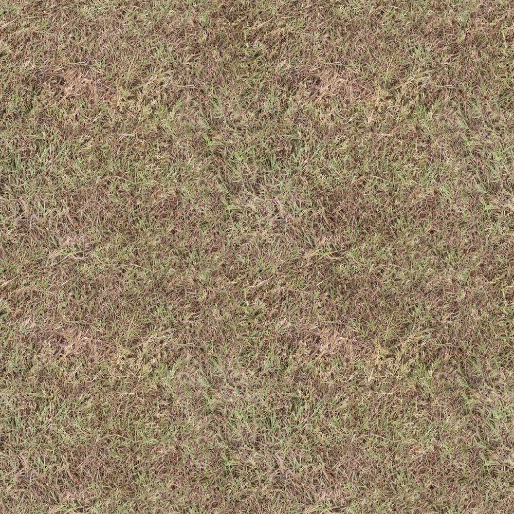 Dirt and Grass — Blender Branch