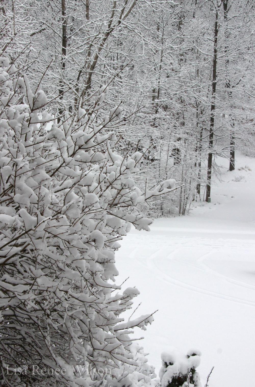 IMG_3509_SnowDriveway.jpg