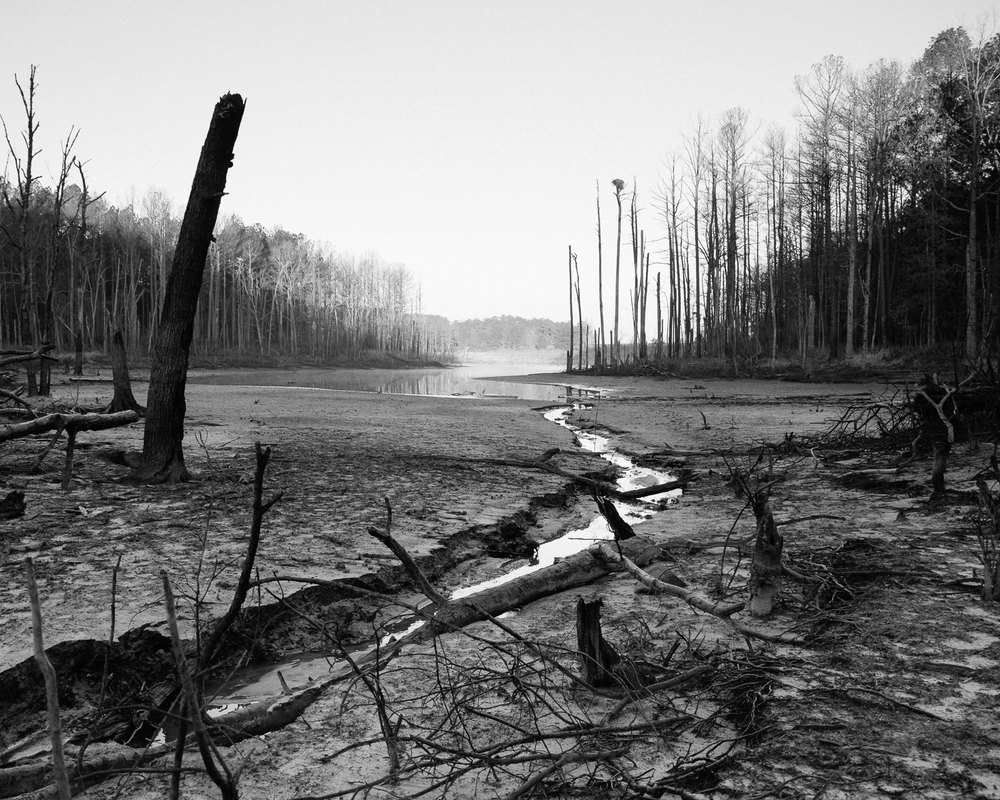 Jordan Lake, North Carolina, 2015-1.jpg