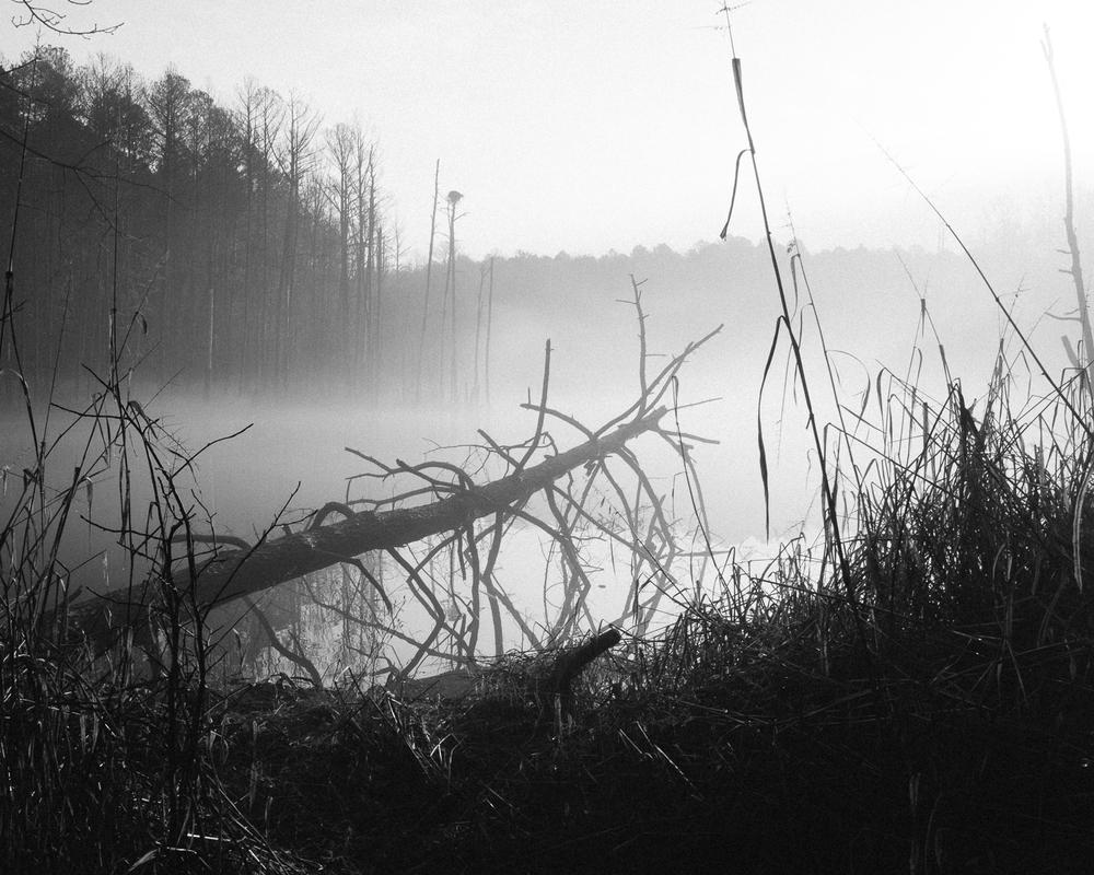 Jordan Lake, North Carolina, 2015-6.jpg