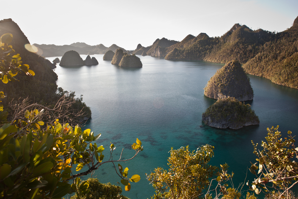 Limestone islands in Wayag (one of the Four Kings), Raja Ampat, Indonesia, are now covered by tropical vegetation. They were once below the waterline and originally made by reef organisms.