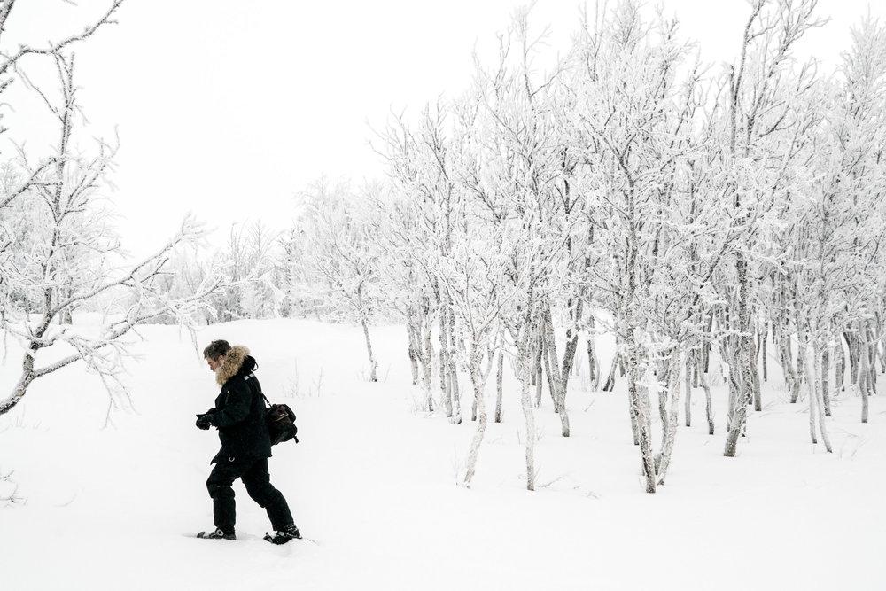 Snow Shoe Walking